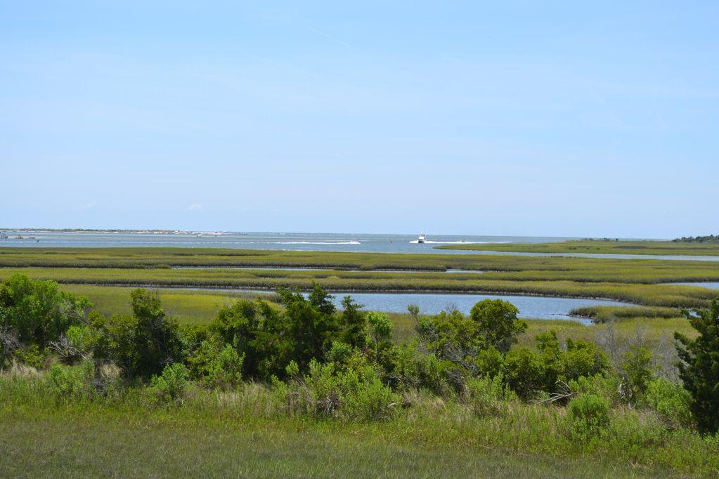 marsh around Sands Island