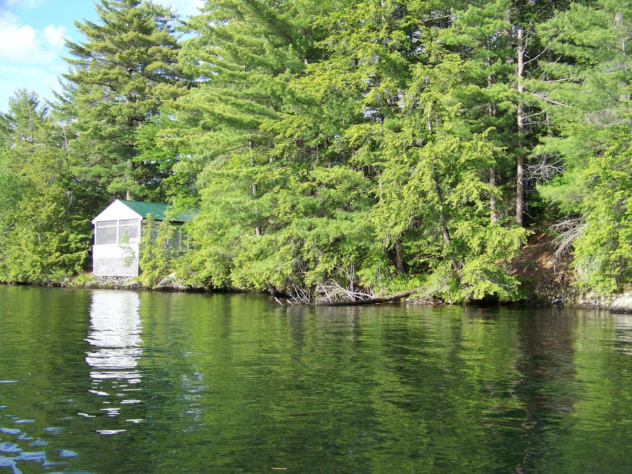 dog friendly cabin Vermont