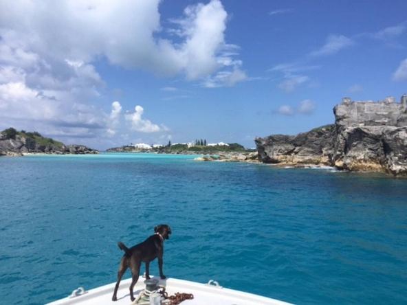 Oswego Island, Bermuda private island